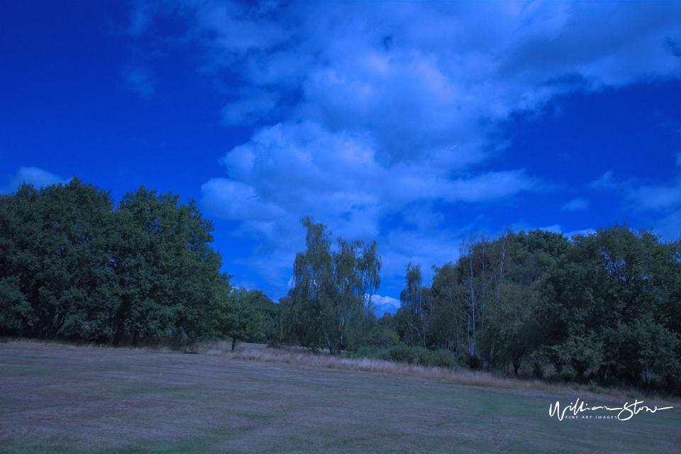 Bluish  Sky - Limited Edition, Fine Art