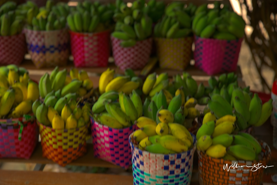 Colorful Bananas - Limited Edition, Fine Art